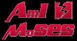 AmI-MoSES
